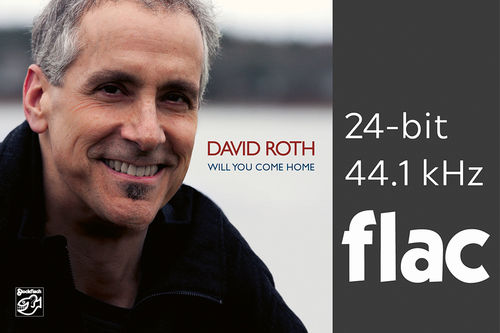 David Roth - Will You Come Home - 24bit/44.1kHz .flac